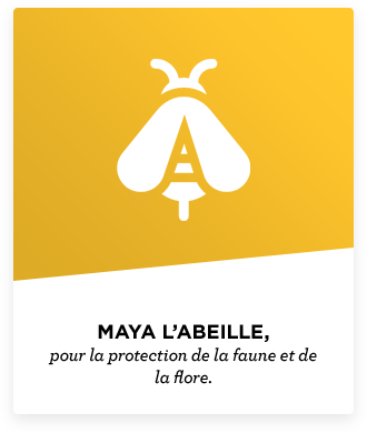 field label